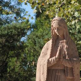 Diocèse de Lyon Concilier écologie et économie : l'exemple d'un cimentier