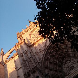 Diocèse de Lyon Se nourrir aujourd'hui, en respectant la terre